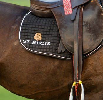 St Regis Clothing And Horsewear thumbnail